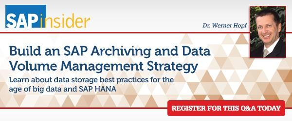 Build an SAP Archiving and Data Volume Management Strategy