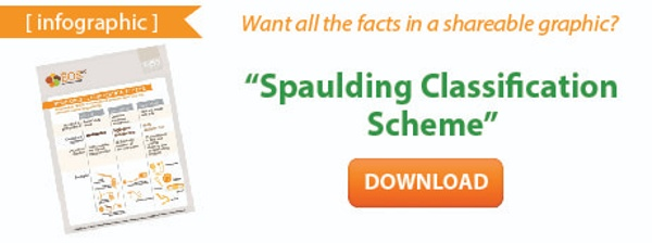 Spaulding Classification Scheme