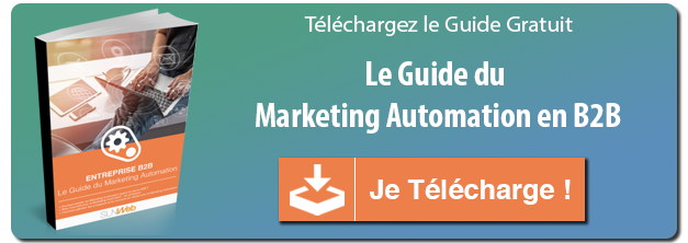 guide marketing automation B2B