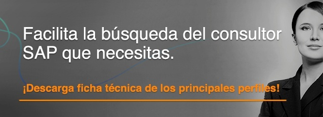 Principales consultores SAP