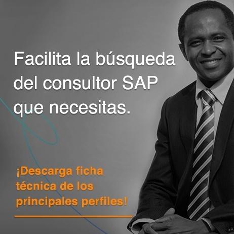 ficha tecnica principales perfiles SAP