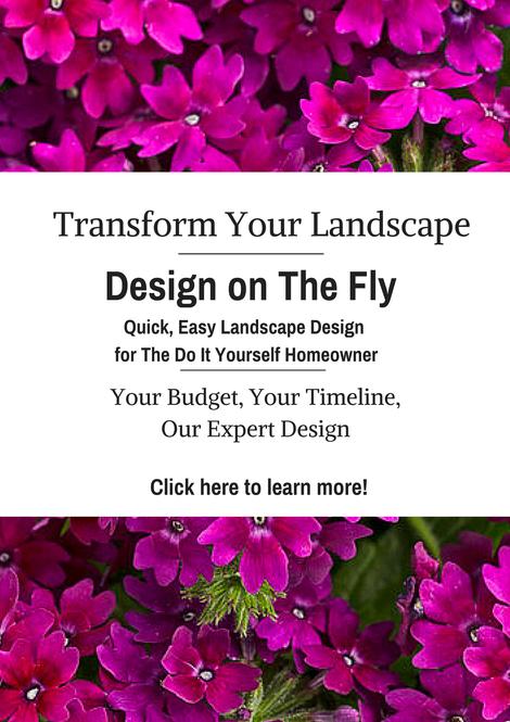 landscape_design_advice