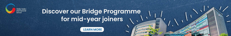 GIIS bridge Programme