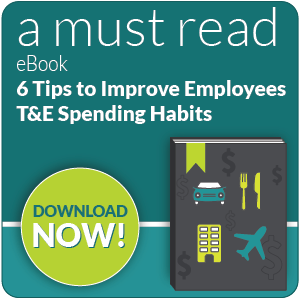 change employee t&e spending