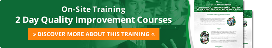 2 day on site quality improvement training courses