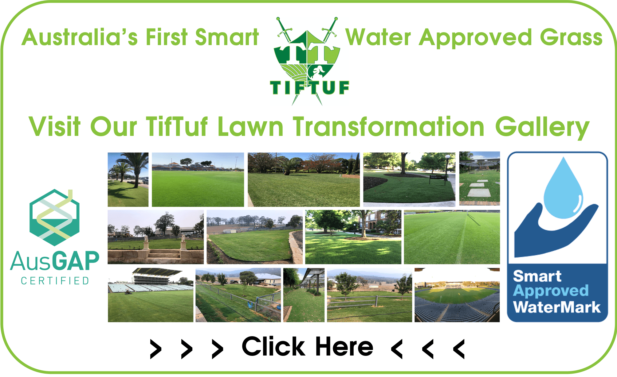 TifTuf Lawn Transformation Gallery | Commercial Lawns