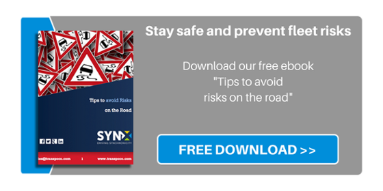 Risks on the Road - FREE ebook