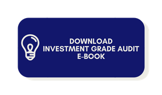 Download Investment Grade Audit E-Book