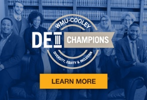 DEI Champions - Become a Champion