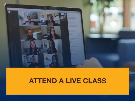 Experience a Live Online Class
