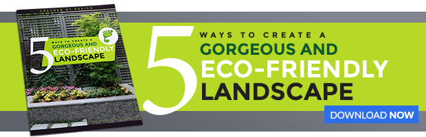 Eco-Friendly-Landscape-Guide