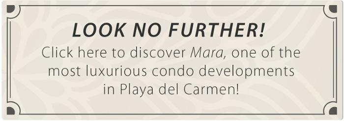 Click here to discover Mara