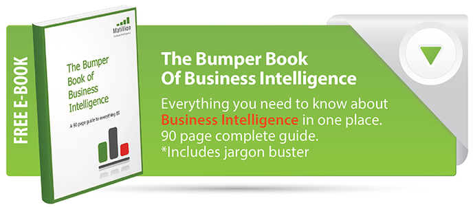 Bumper Book Of Business Intelligence Jargon Buster