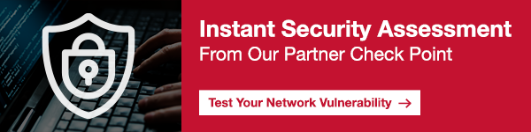 Instant Security Assessment