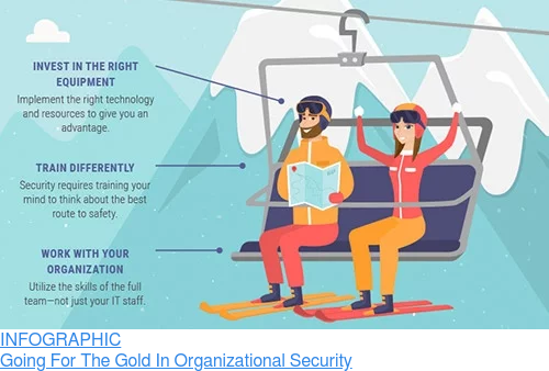 INFOGRAPHIC  Going For The Gold In Organizational Security