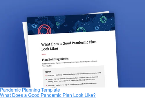 Pandemic Planning Template  What Does a Good Pandemic Plan Look Like?