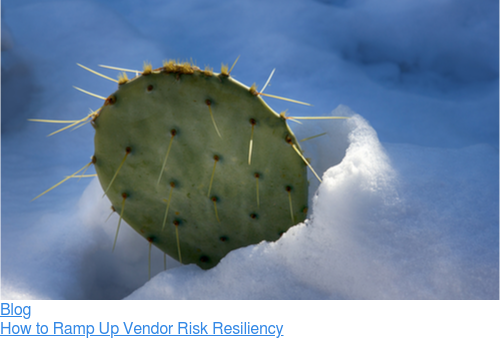 Blog  How to Ramp Up Vendor Risk Resiliency