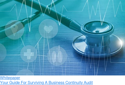 Whitepaper  Your Guide For Surviving A Business Continuity Audit
