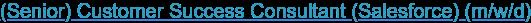 (Senior) Customer Success Consultant (Salesforce) (m/w/d)