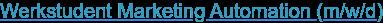 Werkstudent Marketing Automation (m/w/d)