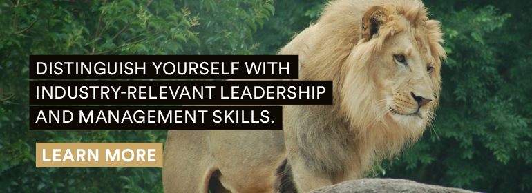 Distinguish yourself wish industry-relevant leadership and management skills. Learn more.