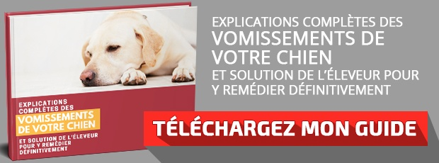 """Télécharger le guide : """"Explications completes des vomissements de votre chien et solution"""""""
