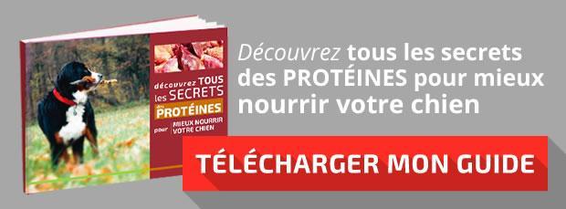 """Télécharger mon guide : """"Les secrets des protéines"""""""