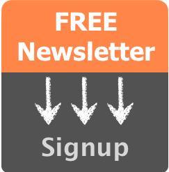 Vizibl Newsletter