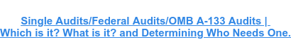 Single Audits/Federal Audits/OMB A-133 Audits |  Which is it? What is it? and Determining Who Needs One.
