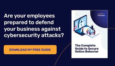 Download The Complete Guide to Secure Online Behavior