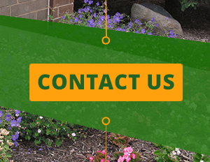Contact Turfscape