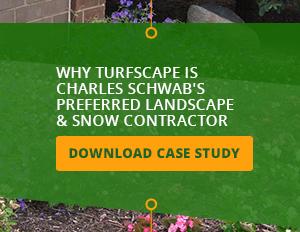 charles-schwab-case-study