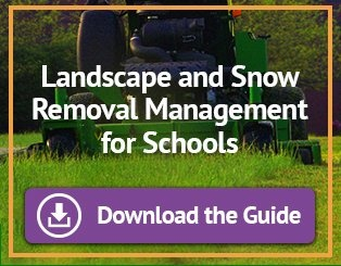 year-round landscape maintenance