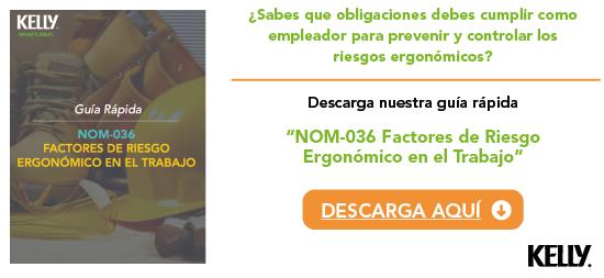 Guía NOM-036