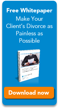 Download our free whitepaper for divorce attorneys!