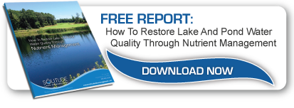 restore-lake-pond-water-quality