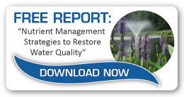 How To Restore Lake And Pond Water Quality Through Nutrient Management