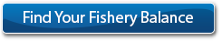 Find Your Fishery Balance