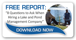 8 Questions To Ask When Hiring A Pond And Lake Management Company