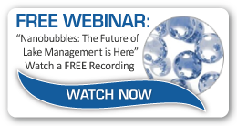 Free Webinar Download: Nanobubble Aeration