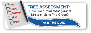 Free Pond Management Assessment