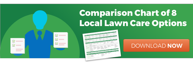Compare lawn care companies in Cincinnati, Dayton, OH, or N. Kentucky