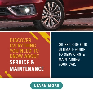 Discover everything you need to know about Service & Maintenance
