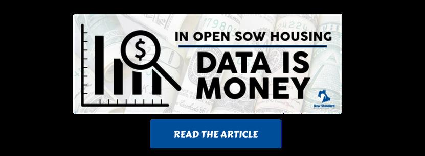 in open sow housing, data is money