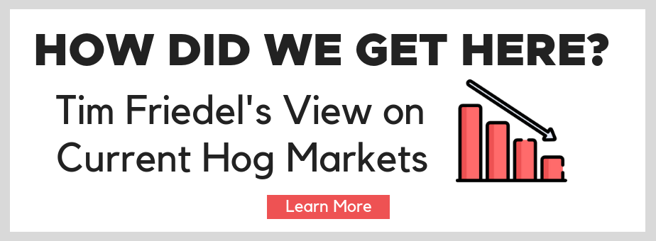How Did We Get Here? Tim Friedel's View on Current Hog Markets - Learn More