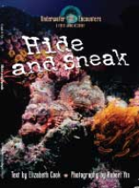 Hide & Sneak Sample Book