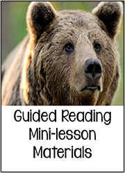Guided Reading Mini-Lesson
