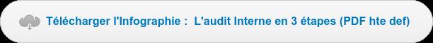 Télécharger l'Infographie : L'audit interne en 3 étapes (PDF haute def)