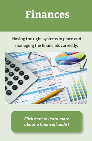 HOA Consulting Financial Audit
