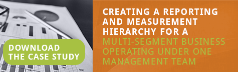 Creating a reporting and measurement hierarchy for a multi-segment business operating under one management team
